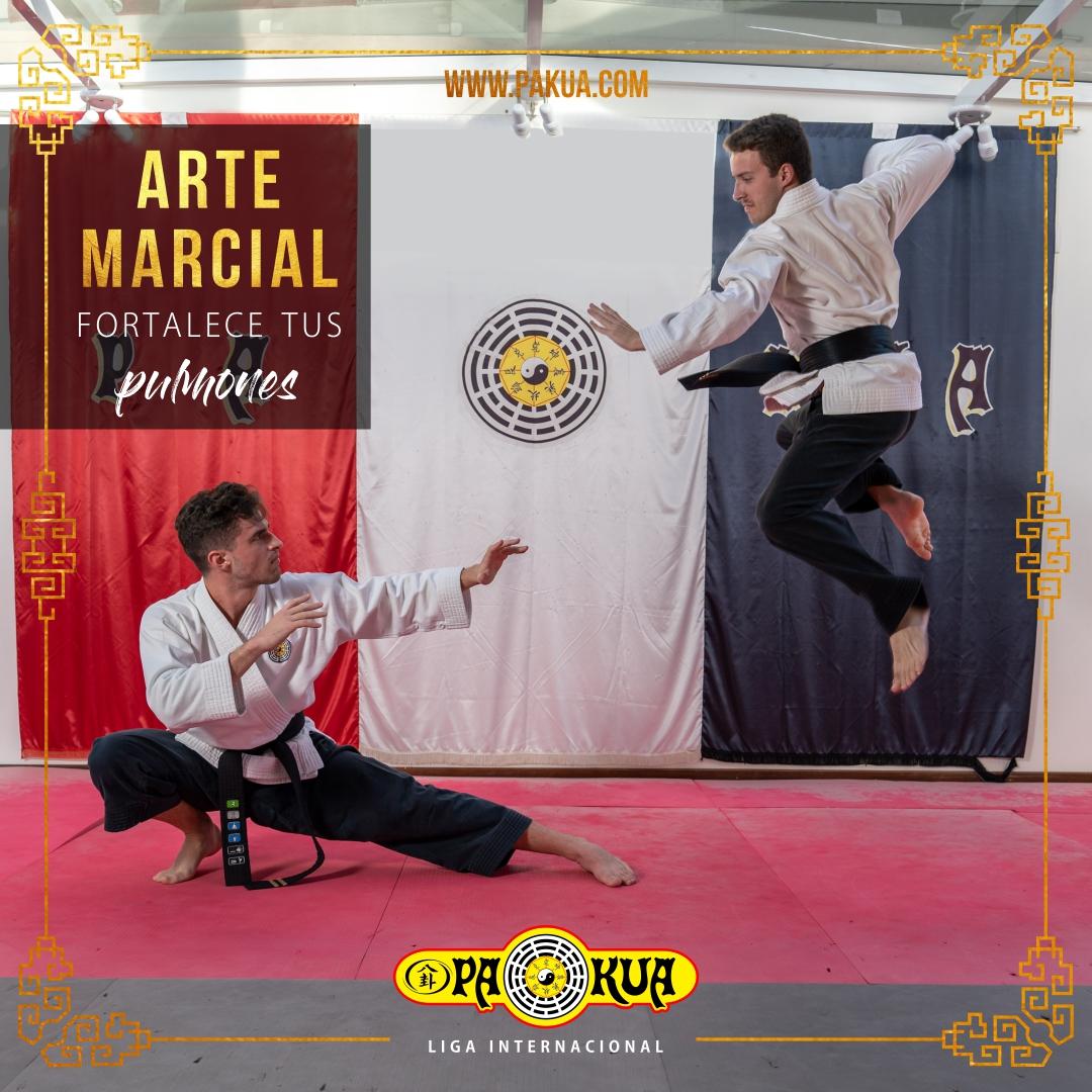 arte marcial - defensa personal
